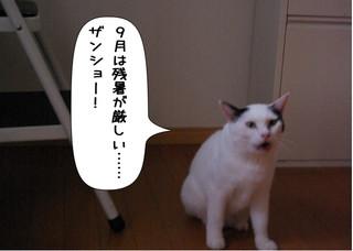 Shirokuro1409_1