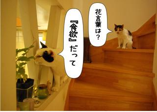 Shirokuro1409_2