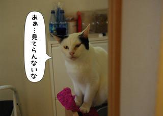 Shirokuro1409_3