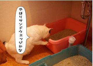 Shirokuro14102_